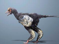 ¿Fue este el primer dinosaurio emplumado de la Tierra? Aquí tienes la respuesta: http://www.muyinteresante.es/ciencia/articulo/fue-este-el-primer-dinosaurio-emplumado-de-la-tierra-871369895577 #ciencia #science