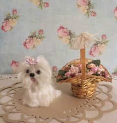 miniature maltese with puppy cut hairstyle, and mini basket full of roses