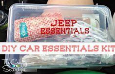 The Crafty Scientist: DIY Car Essentials Box