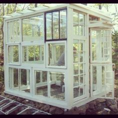 Greenhouse made from windows!