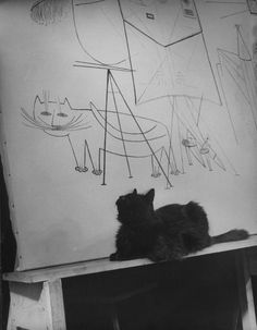 """""""Gatopoder"""" Steinberg / Eames / Mili : Photographer Gjon Mili's cat Blackie in front of a Steinberg drawing"""