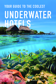 Above ground hotels are so last year. Why check in at a Holiday Inn when you could spend the night sleeping with the fishes… literally.