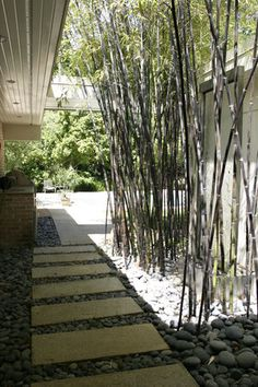 Love the look of the black bamboo and the stone