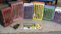 "Zoo Animals:  Retelling ""Goodnight, Gorilla"""