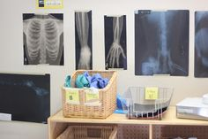 doctor's office & more dramatic play centers