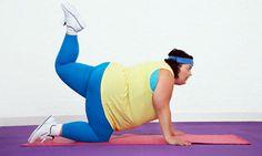 Obesidade pode ser causada por bactéria