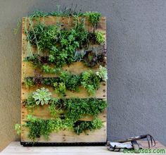 Jardín vertical reciclando un palé
