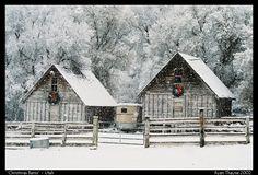 Snow decked barns