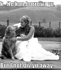anim, wedding dog pictures, dogs, weddings, wedding photos, puppi, bride, wedding pictures, friend