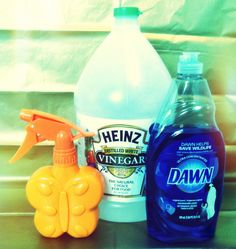 DIY Tub and Shower Cleaner. equal parts of warm vinegar and blue dawn....Magic!