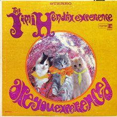 Kitty Album Covers