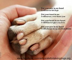 Put your paw in my hand I will never let it go. Put your trust in me I will never, ever leave you. Put your heart in my heart I will forever give you love. Put your paw in my hand I will always keep you from harm ♥