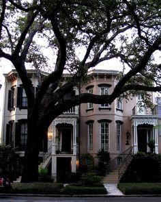Savannah-home <3