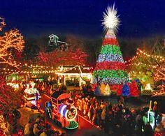 holiday, missouri, christmas lights, branson, dollar citi, silver dollar city, christma light, place, christmas trees
