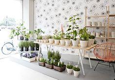 modern gardens, interior design, copenhagen, indoor herbs, interior garden, herbs garden, garden design ideas, modern garden design, flower