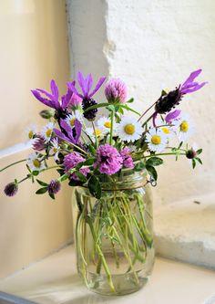 Wildflowers #xoominbloom #flowers