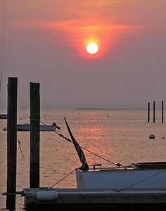 Rhode Island Red    #VisitRhodeIsland