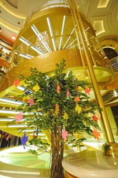 Giving thanks!  This year, passengers could write down and share the things for which they are most thankful, and pin them on the Tree of Thanks onboard.