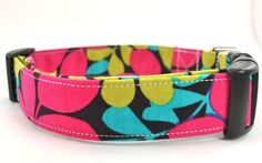 Cute dog collar!