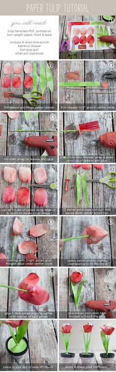 Paper Tulip tutorial -- with free Templates from Ellinée