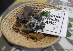 A basket of toys animals that increases literacy!