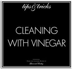 T&T_cleaning-with-vinegar