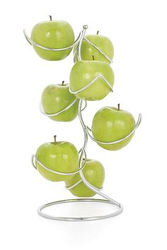 Fruit Tree Fruit Holder