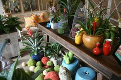 Pot your garden gems in #colorful #vases at #Chicago #Mecox #interiordesign #MecoxGardens #furniture #shopping #home #decor #design #room #designidea #vintage #antique #garden