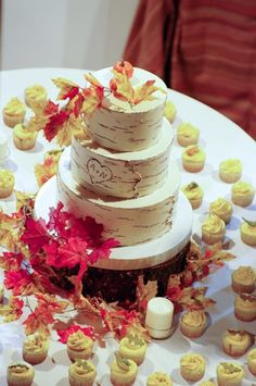 Adorable birch tree cake and cupcakes