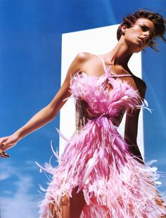 feathers in pink