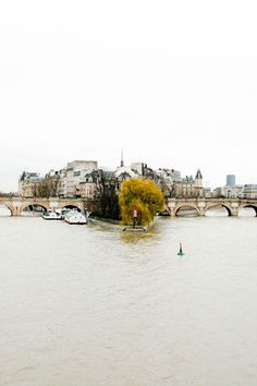 the seine / paris