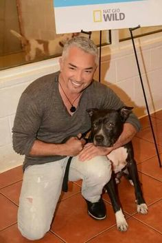 Miami - Even Cesar thinks Rocco is a good boy, so why is it taking so long? 3 long years at Miami Humane Society! Please SHARE! He needs a family who will live him for the amazing pittie he is.