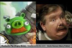 look alike, harri potter, funni stuff, laugh, funni thing, pigs, uncl vernon, harry potter, angri bird