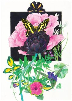 Black Tulip and Peony (above; watercolor and colored pencil, 19.5×13.5) by Karen Anne Klein. Free step-by-step demo of flowers in watercolor and colored pencil.