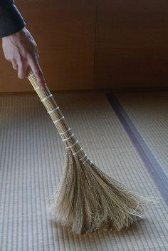 Japanese broom