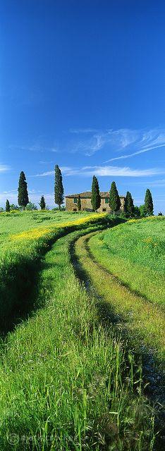 Up the garden, Tuscany, Italy