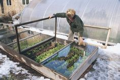 A cold frame with a glass top can give you a 12-month growing season, even in Maine, and it's the easiest and most economical way to extend your harvest. Build the one described here, and you're on your way to fresh veggies year round. Via vegetablegardener.com