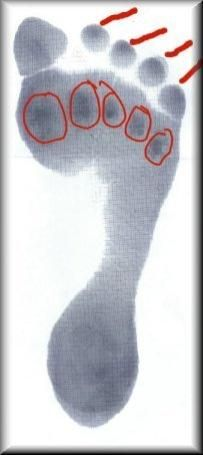 Foot exercises and stretches