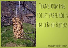 Transforming Toilet Paper Rolls Into Bird Feeders by @JnJGoGreen