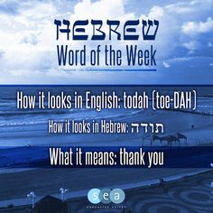 "This week's ""Hebrew Word of the Week"" is todah -  (thank you)"