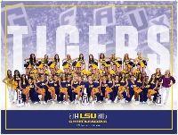 2014-15 LSU Cheerleading Poster