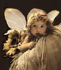 dorothi wallac, angel, fairi babi, babi fairi, girl parties