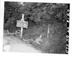Saint-Lô (Manche) - 83 photographies