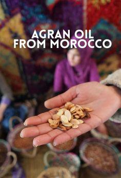 Argan Oil in a Nut S