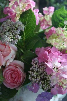 rose, color, hydrangea