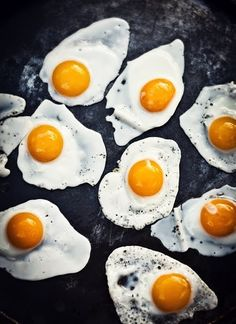 The quality of #egg protein is the highest of any whole food product