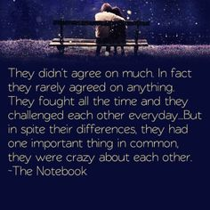 They didn't agree on much, in fact they didn't agree on anything. They fought all the time and they challenged each other everyday. But in spite their differences , they had one important thing in common, they were crazy about each other. - The Notebook... One of my favorite quotes