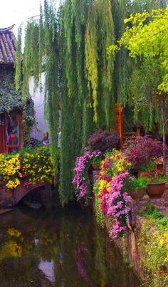 Weeping Willow Bridge in Yunnan, China