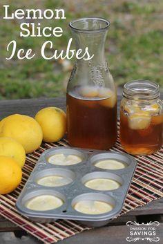 DIY Lemon Slice Ice Cubes! If you love Lemon Water or Lemon Recipes, this is perfect!