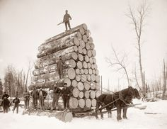damm that's a lot of wood, poor horses!